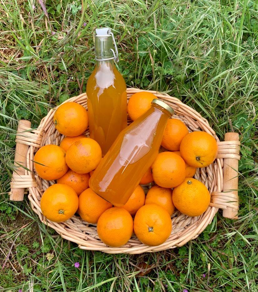 Orangen- oder Zitronensirup