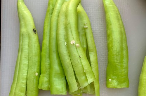 scharfe grüne Paprika